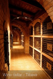Wine cellar Tibava